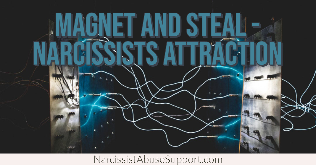 Magnet and Steal - Narcissists Attraction, How to stop the