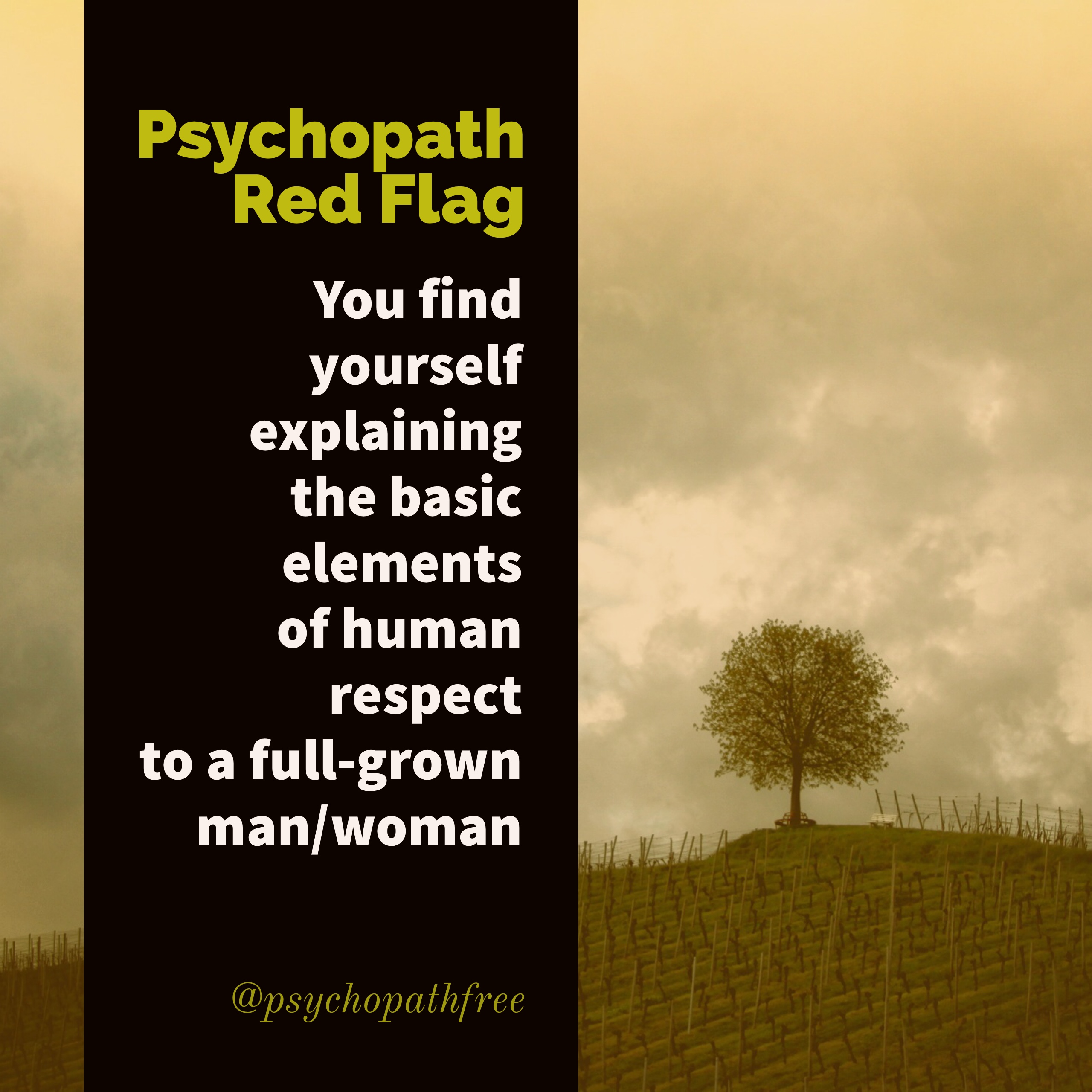 Dating red flags list psychopath