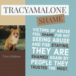 Shame: Victims of abuse feel shame for not seeing abuse and for staying. They are shamed again by people they trusted the most.