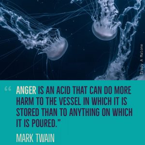 """Anger is an acid that can do more harm to the vessel in which it is stored that to anything on which it is poured."" - Mark Twain"