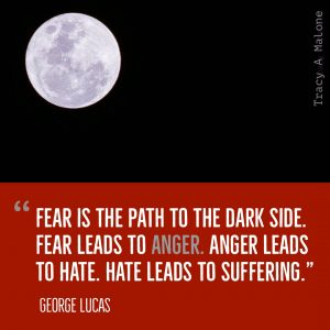 """Fear is the path to the dark side. Fear leads to Anger. Anger leads to hate. Hate leads to sufffering."" -George Lucas"