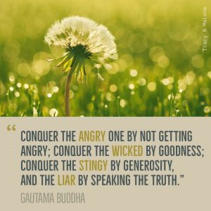 """""""Conquer the Angry one by not getting angry; conquer the wicked by goodness; conquer the stingy by generosity, and the liar by speaking the truth."""" - Gautama Buddha"""