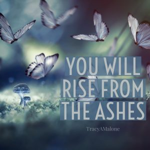 You will rise from the ashes.  - Tracy A. Malone