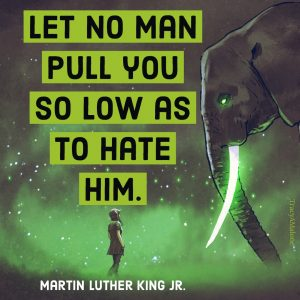 Let no man pull you so low as to hate him. - Martin Luther King Jr.