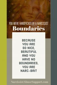 You were handpicked by a narcissist - Boundaries: Because you are so nice, beautiful and you have no boundaries, you are narc-bait. - NarcissistAbuseSupport.com
