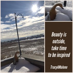 Beauty is outside, take time to be inspired. - Tracy A. Malone
