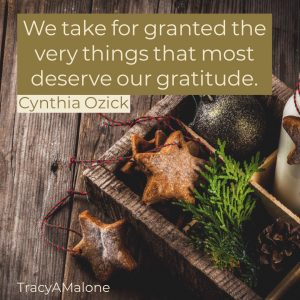 We take for granted the very things that most deserve our gratitude. - Cynthia Ozick