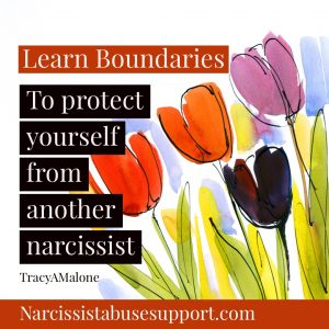 Learn Boundaries to protect yourself from another narcissist. - Tracy A Malone - NarcissistAbuseSupport.com