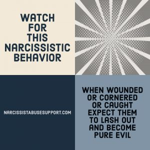 Watch for this Narcissistic Behavior - When wounded or cornered or caught, expect them to lash out and become pure evil. - NarcissistAbuseSupport.com