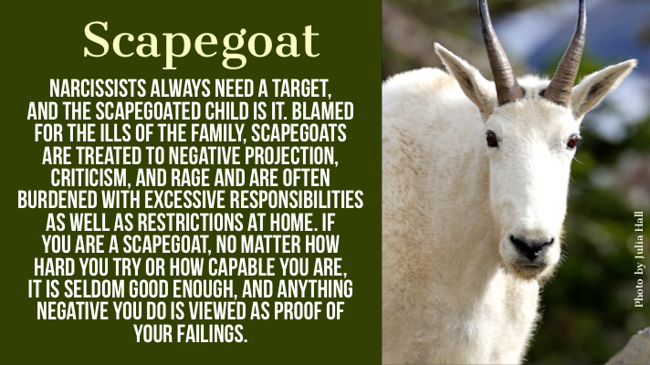 Child Roles in the Narcissistic Family: Scapegoat