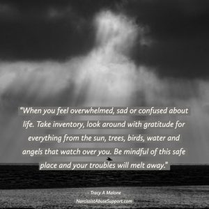 When you feel overwhelmed, sad or confused about life, take inventory, look around with gratitude for everything from the sun, trees, birds, water and angels that watch over you. Be mindful of this safe place and your troubles will melt away. - Tracy A Malone, NarcissistAbuseSupport.com
