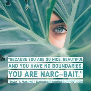 Because you are so nice, beautiful and you have no boundaries, you are narc-bait. -Tracy A Malone, NarcissistAbuseSupport.com