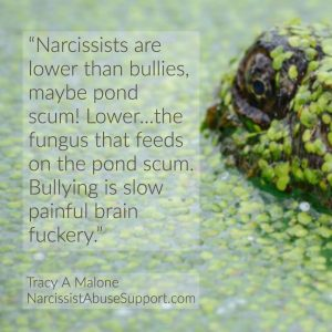 Narcissists are lower than bullies, maybe pond scum! Lower...the fungus that feeds on the pond scum. Bullying is slow painful brain fuckery. -Tracy A Malone, NarcissistAbuseSupport.com