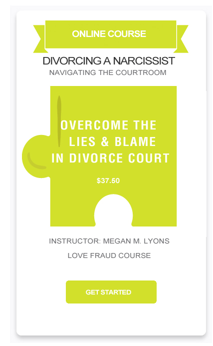 OVERCOMING-LIES-BLAME-IN-COURTROOM