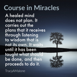 A healed mind does not plan. It carries out the plans that it receives through listening to wisdom that is not its own. It waits until it has been taught what should be done, and then proceeds to do it. - Course in Miracles