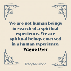 We are not human beings in search of a spiritual experience. We are spiritual beings immersed in a human experience. - Wayne Dyer