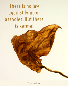 There is no law against lying or assholes. But there is karma! - Tracy A. Malone
