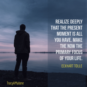 Realize deeply that the present moment is all you have. Make the now the primary focus of your life. - Eckhart Tolle