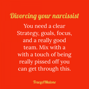 Divorcing your narcissist - You need a clear strategy, goals, focus, and a really good team. Mix with a touch of being really pissed off you can get through this. - Tracy A. Malone