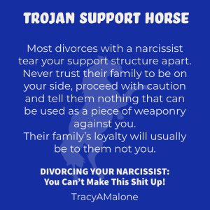Trojan support horse - Most divorces with a narcissist tear your support structure apart. Never trust their family to be on your side, proceed with caution and tell them nothing that can be used as a piece of weaponry against you. Their family's loyalty will usually be to them not you. - Tracy A. Malone