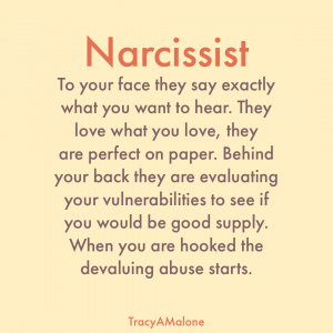 Narcissist - To your face they say exactly what you want to hear. They love what you love, they are perfect on paper. Behind your back they are evaluating your vulnerabilities to see if you would be good supply. When you are hooked the devaluing abuse starts. - Tracy A. Malone